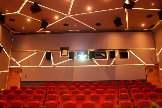 Ilustración 1. Acondicionamiento acústico en Auditorios y Salas de Cine. Implementación de paneles absorbentes y materiales aislantes de sonido en paredes, techo y piso.